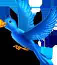 Amazon Birdie