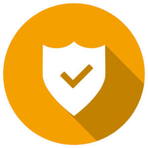 The software protection industry scharges to stay safe while we surf